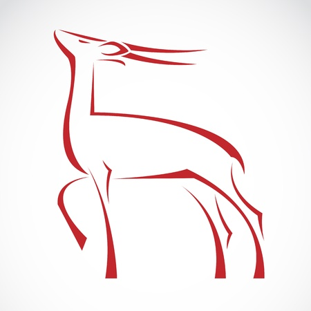 barking: Vector immagine di un cervo che abbaia