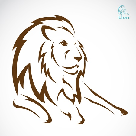 Vector image of an lion on white background  Illustration