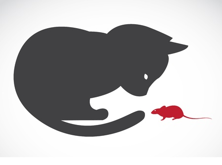 rodent: Vector image of an cats and rats on white background