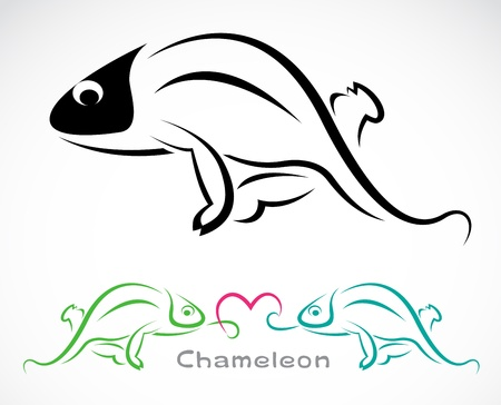 Vector image of an chameleon on a white background Vector