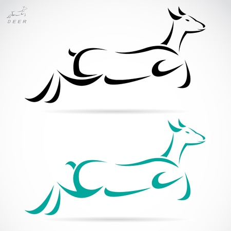 Vector illustration of deer symbol - tattoo Stock Vector - 19943415