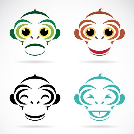 monkey face: Vector image of an monkey on white background