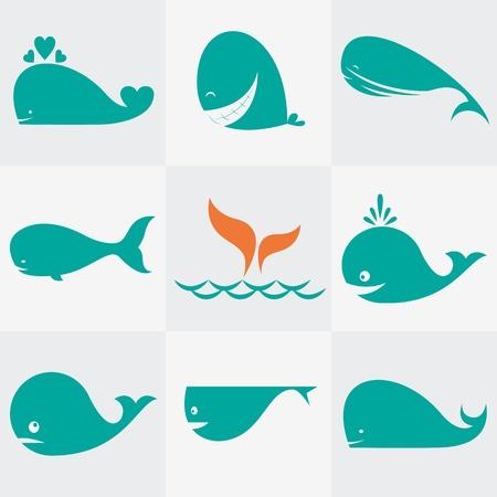ballena: Conjunto de vectores iconos de ballena en el fondo gris