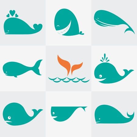Set of vector whale icons on gray background Vector