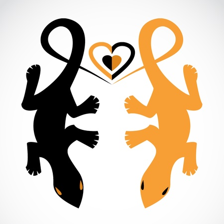 Two lizards show their love for each other Vector
