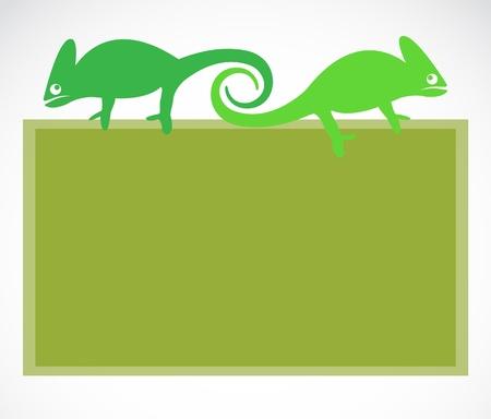School blackboard with chameleon - vector illustration. Stock Vector - 20196819