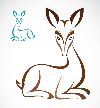 Vector image of an deer on white background  Illustration
