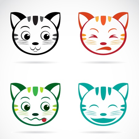 Vector image of an cat face on white background  Vector