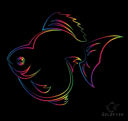 Vector image of an goldfish on black background  Vector
