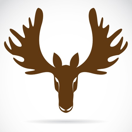 deer hunting: image of an deer head  on a white background