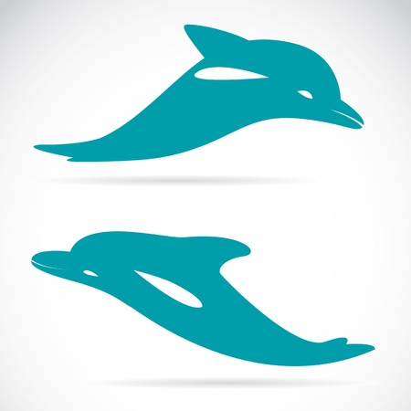 image of an dolphin on white background  Vector