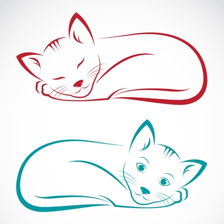silueta gato: imagen de un gato en el fondo blanco Vectores