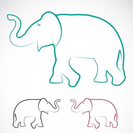 Image d'un éléphant sur un fond blanc Banque d'images - 20478725