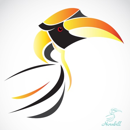 image of an hornbill  on a white background Vector