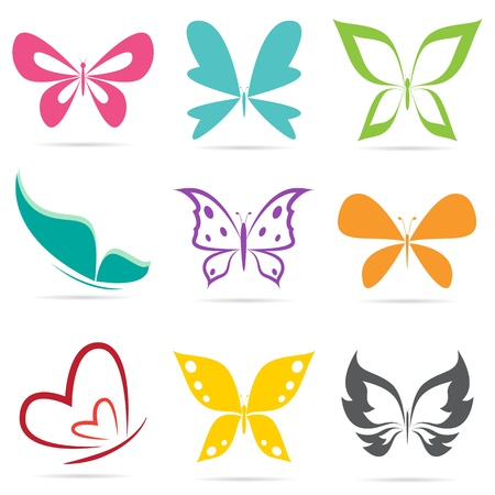 Group of butterflies on white background.