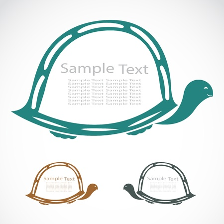 The design of the turtle on white background Stock Vector - 20663975