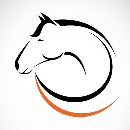 白い背景の上の馬の頭