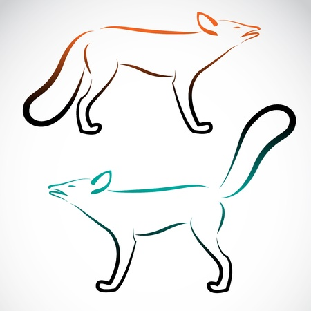 image of an fox on white background Vector