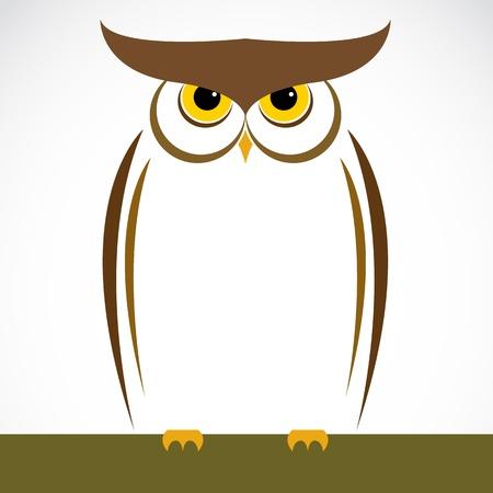 sowa: Obraz z sowa na białym tle Ilustracja