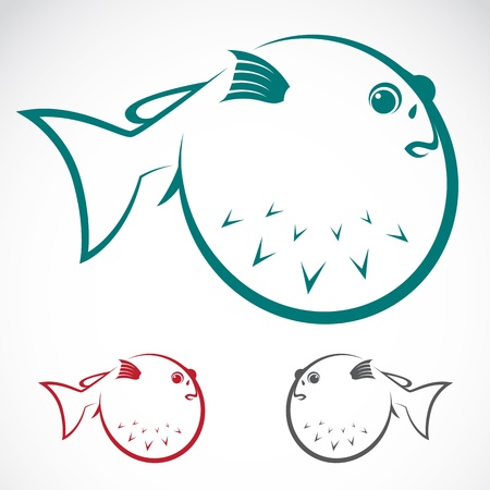 blowfish: image of an puffer on white background Illustration