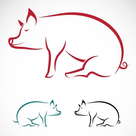 servicio domestico: imagen de un cerdo en el fondo blanco