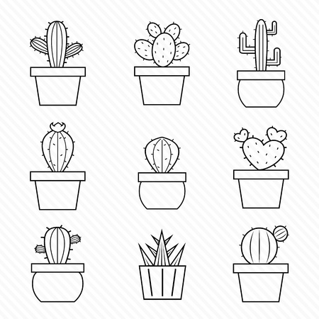 Set of cactus icons on white background Vector
