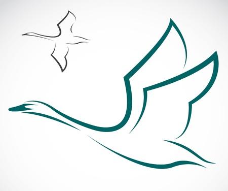 白い背景の上の白鳥のイメージ。
