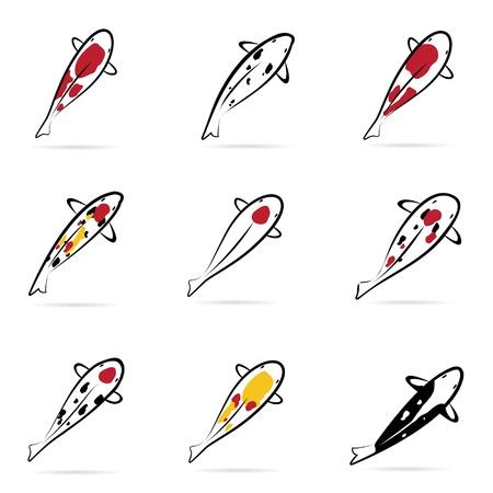 pez carpa: Ajuste de la carpa koi en fondo blanco Vectores