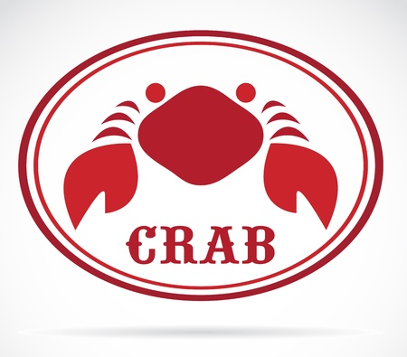 crab on white background  Vector
