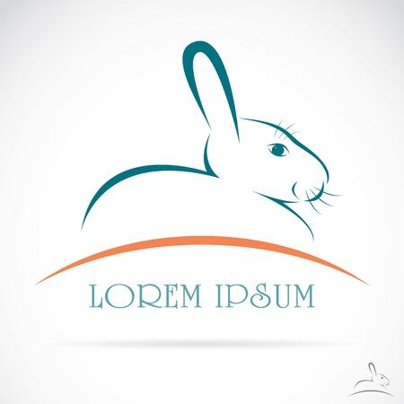 lapin silhouette: image d'un lapin sur fond blanc