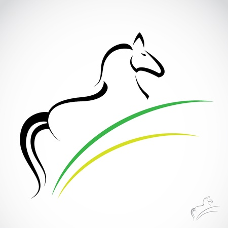 Vector image of an horse on white background  Illustration