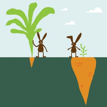 verschillen: Konijn en wortel