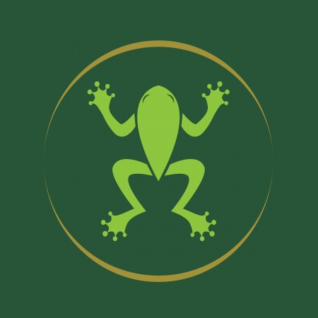Vector image of a frog .  Vector