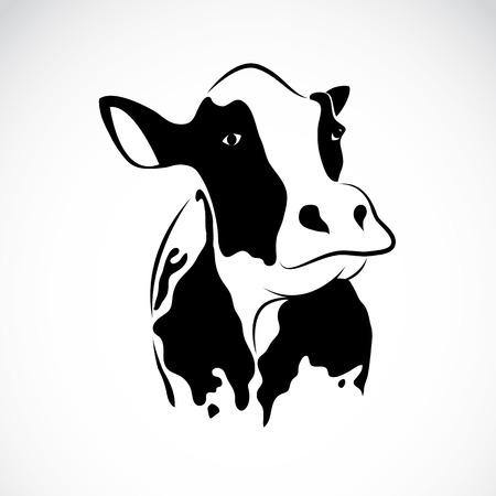 ganado: imagen de una vaca Vectores