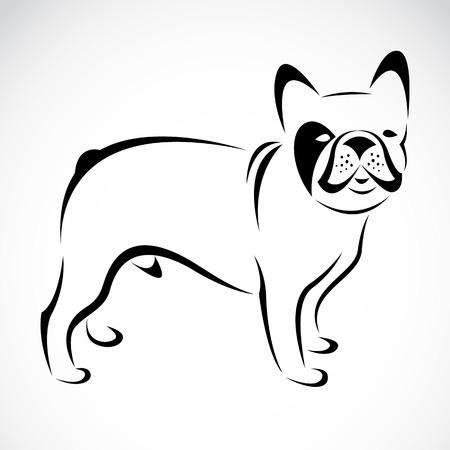 frans: Vector beeld van een hond (bulldog) op een witte achtergrond