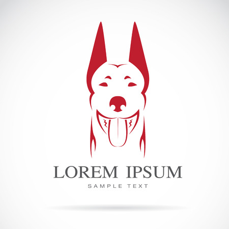 head collar: Vector image of an dog (doberman) on white background Illustration