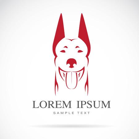 kampfhund: Vektor-Bild von einem Hund (Dobermann) auf weißem Hintergrund Illustration