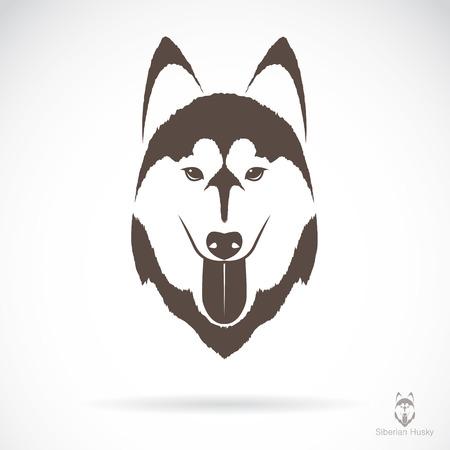 재킷: 흰색 배경에 개 시베리안 허스키의 벡터 이미지