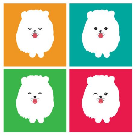 Vector image of an dog  pomeranian on white background Vector