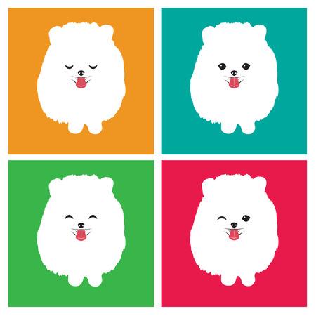 pom pom: Vector image of an dog  pomeranian on white background