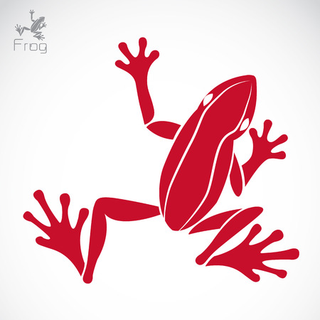 jumping: Vector image of an frog on white background