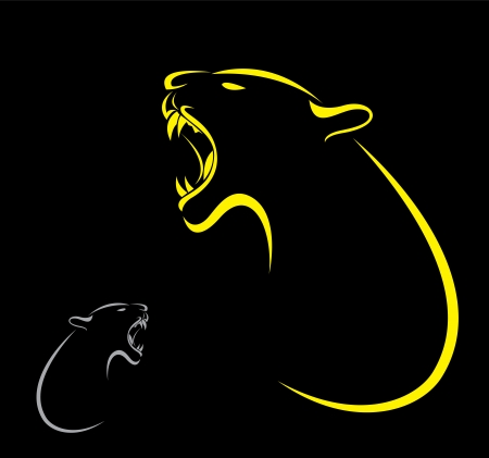 wildcat: Vector image of an tiger on black background  Illustration