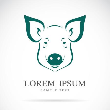 白い背景の上に豚の頭のベクトル画像  イラスト・ベクター素材