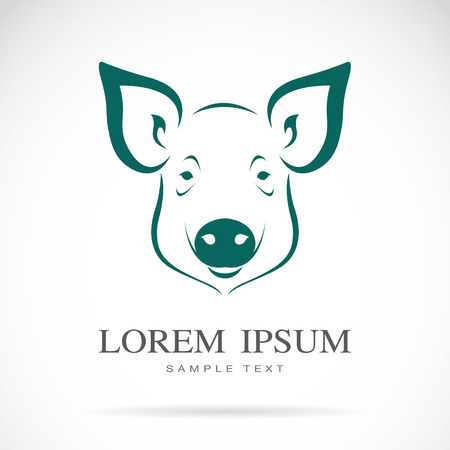 Vector image of an pigs head on white background Illustration