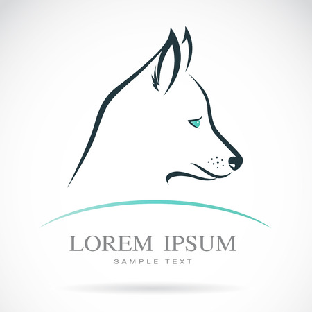 Vector image of a dog Siberian husky on white background Vector