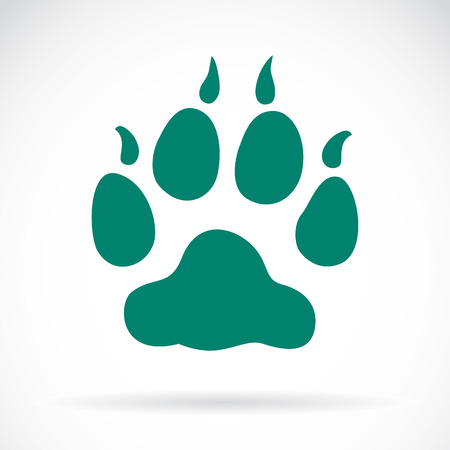 Illustration animals paws print on a white background Vector