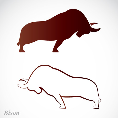 ox: Vector image of an bison on a white background