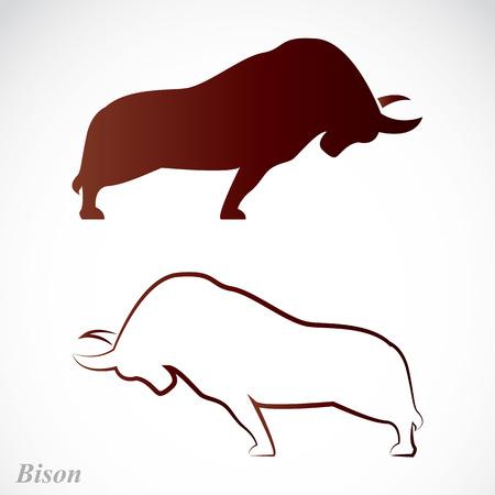 buey: Vector imagen de un bisonte en un fondo blanco Vectores