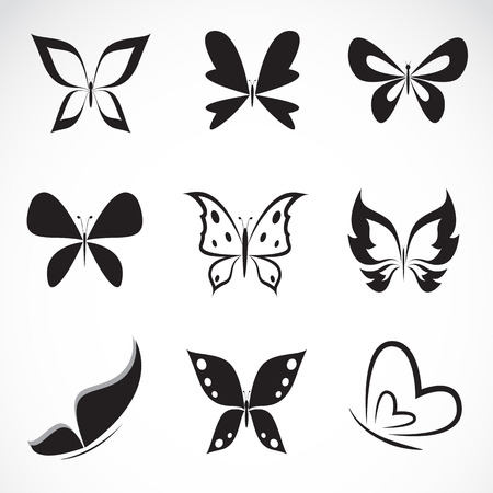 animal silhouette: Vector group of butterfly on white background  Illustration