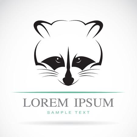Vector de imagen de un mapache en el fondo blanco